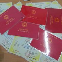 Đại biểu Quốc hội đề nghị xác minh bằng cấp của Bí thư Tỉnh ủy Hải Dương