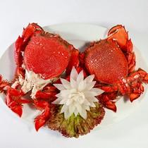 Du lịch ẩm thực: Cơ hội mới cho các nhà đầu tư bất động sản tại Quy Nhơn