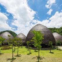 5 mái nhà tranh khổng lồ như trái núi nhỏ ở Sơn La