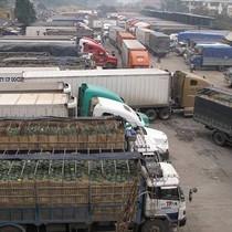 Gần chục đơn vị vào cuộc giải quyết tình trạng ùn ứ hàng hóa ở cửa khẩu Tân Thanh