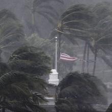 Người Việt giữa tâm bão Irma