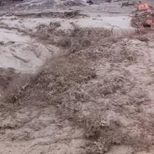 [Video] Nước lũ cuốn trôi nhà, đánh sập cầu ở Nghệ An