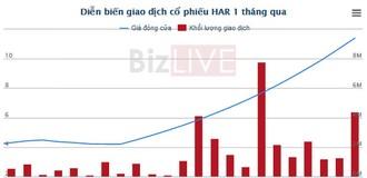 HAR: Doanh thu thuần quý II chưa tới 5 tỷ, EPS nửa năm gần 50 đồng nhưng cổ phiếu tăng hơn 150%