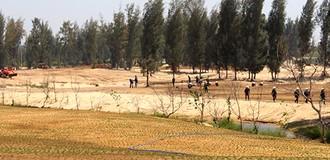 Dự án đốn 100 hecta rừng làm sân golf ở Phú Yên được ưu ái ra sao?