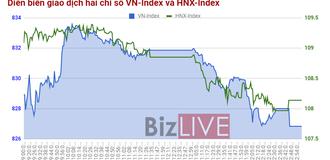 Chứng khoán chiều 20/10: ROS tím một góc, phần còn lại thị trường chìm trong sắc đỏ