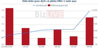 HNG: Cổ đông thông qua phương án phát hành gần 150 triệu cổ phiếu hoán đổi nợ