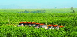 HNG: Dự kiến bán 30 triệu cổ phiếu riêng lẻ cho 5 nhà đầu tư cá nhân