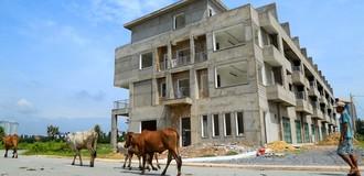 Biệt thự, nhà phố tiền tỷ bỏ hoang ở thành phố mới Bình Dương