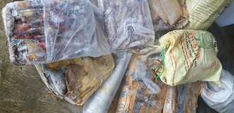 100 tấn hải sản hư hỏng vì kho mất điện sau bão