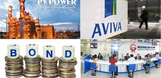 [Round-up] Messer to Build Largest Industrial Gas Site in Vietnam, PV Power Prepares for August IPO