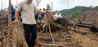 Hơn 100 héc ta rừng phòng hộ bị xóa sổ ở Quảng Nam