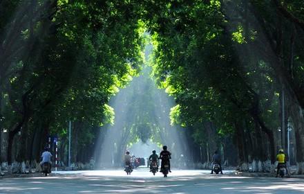 Nam Bộ mưa dông, Bắc Bộ trời âm u