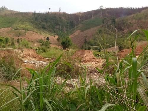 Ruộng đồng ở thôn Đăk Ôn bỏ hoang sau khi vàng tặc khai thác vàng sa khoáng