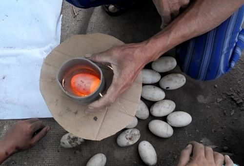 Bên trong trang trại nuôi cá sấu làm đồ da lớn nhất Sài Gòn - ảnh 3