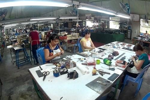 Bên trong trang trại nuôi cá sấu làm đồ da lớn nhất Sài Gòn - ảnh 6