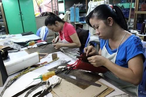 Bên trong trang trại nuôi cá sấu làm đồ da lớn nhất Sài Gòn - ảnh 9