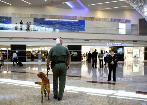 10 sân bay đón nhiều khách nhất thế giới - ảnh 1
