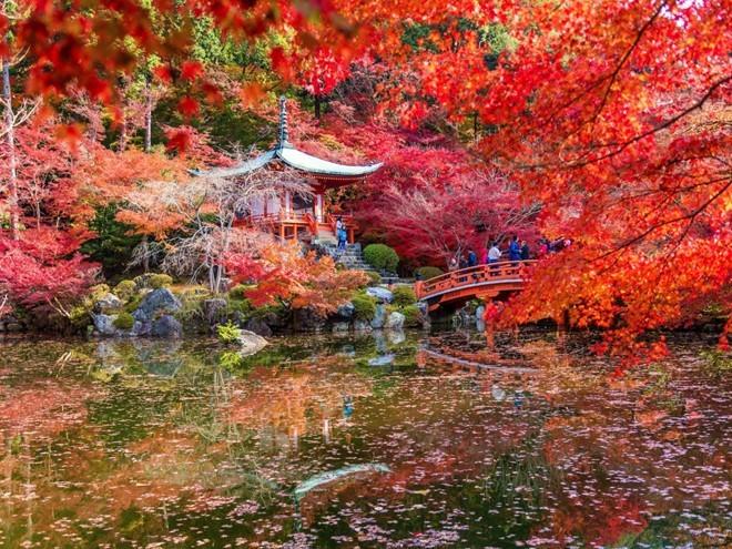 Kyoto, Nhật Bản, vừa được Travel + Leisure vinh danh là thành phố tuyệt nhất thế giới dựa trên bình chọn của độc giả. Từng là kinh đô của Nhật hơn 1.000 năm, thành phố này có rất nhiều đền miếu, vườn và công viên để bạn khám phá.