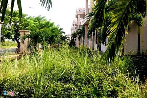 Biệt thự trăm tỷ giữa Đà Nẵng thành khu 'nhà ma' - ảnh 9