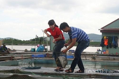 Vua cá giòn thành tỷ phú ở tuổi 27 - ảnh 1