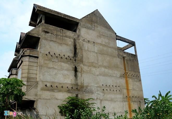 Biệt thự cao cấp ở Sài Gòn thành nơi chăn bò