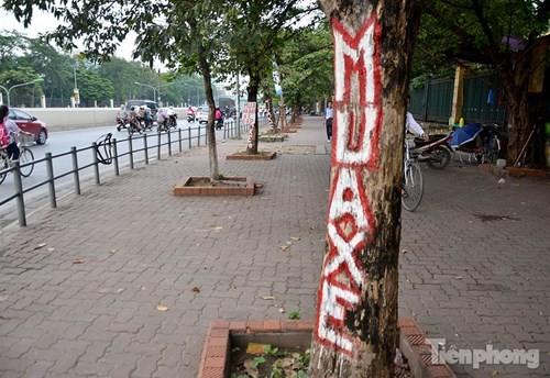 Những 'ám hiệu' trong kinh doanh ở vỉa hè Hà Nội - ảnh 7