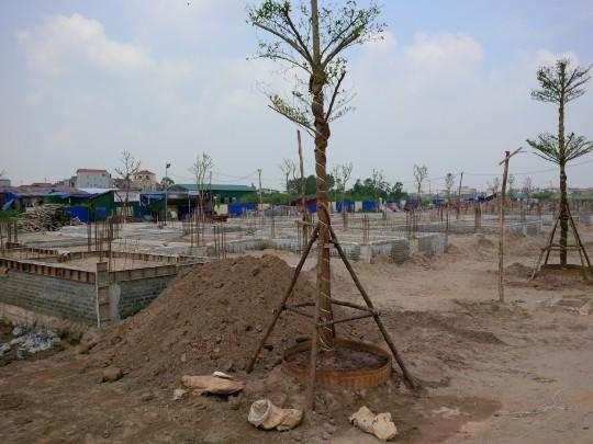 Hiện nay đất nền dự án đang được rao bán với giá từ 15-20 triệu đồng/m2