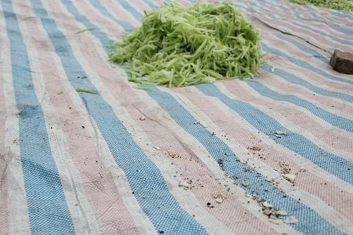 Kinh hoàng mứt Tết phơi cạnh khu vệ sinh, trộn lẫn đất cát - 7