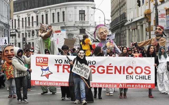 Biểu tình chống Mosanto ở Chile năm 2013