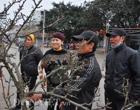 """Chị Minh (ở quận Tây Hồ, Hà Nội) chia sẻ: Lê rừng là một loài hoa đẹp, chỉ tháng Giêng mới có nên năm nào tôi cũng dành thời gian ra chợ ngắm và mua một cành về chơi cho thích""""."""