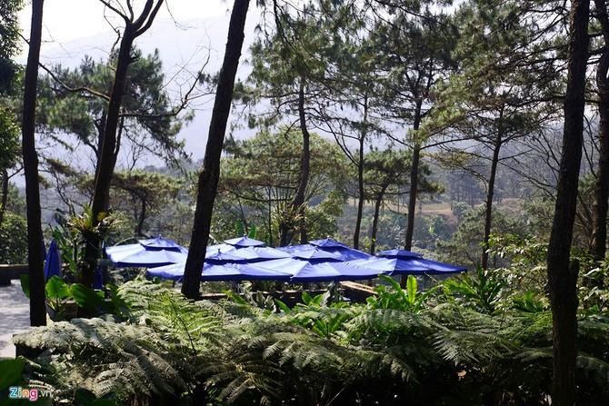 Toàn cảnh resort hoành tráng không phép ở Ba Vì