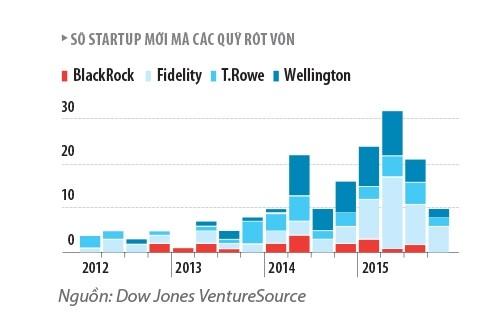Da den thoi that sung cua cac startup?