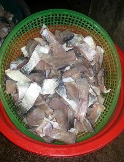 Cá mới đánh bắt tươi ngon, được làm sạch và thái miếng gọn gàng.