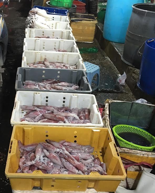 cá biển chết, biển miền trung, cá biển chết ở miền trung, cá nhiễm độc, dân không dám ăn, tiểu thương ngừng bán, chợ đầu mối