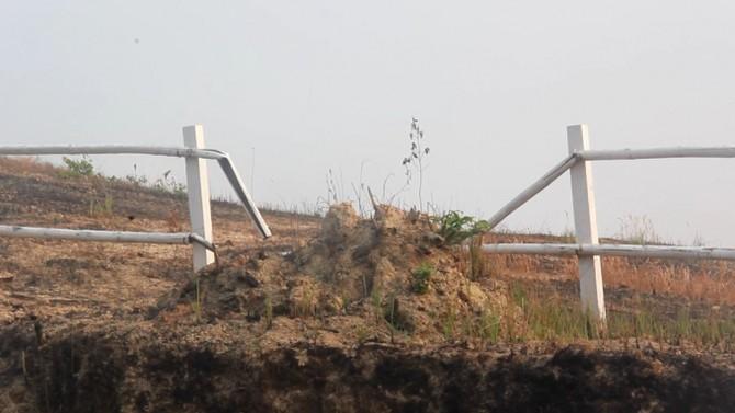Hàng rào gãy đổ.