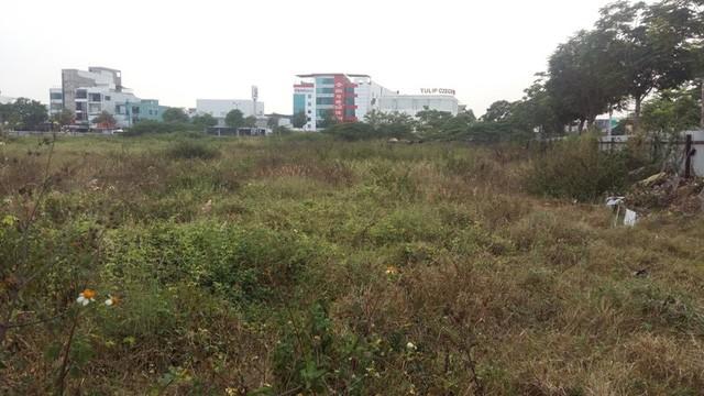 Một khu đất nằm gần cầu Rồng, ngay điểm cuối bờ sông Hàn vẫn đầy cỏ dại.
