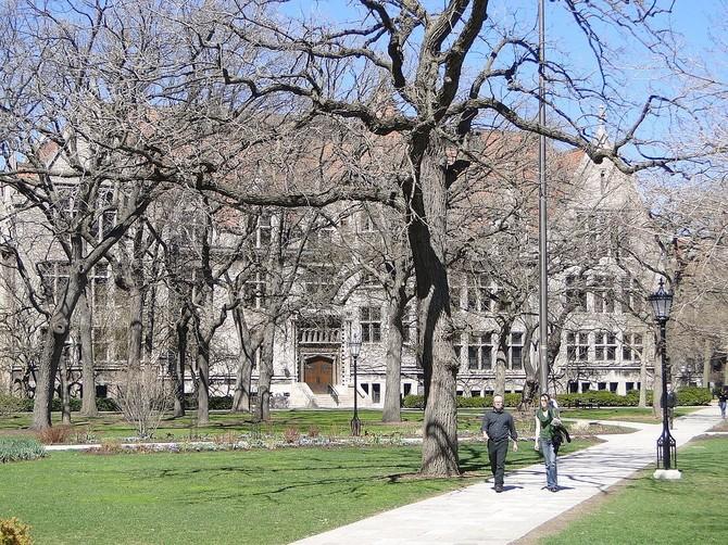Số 8 - Đại học Chicago