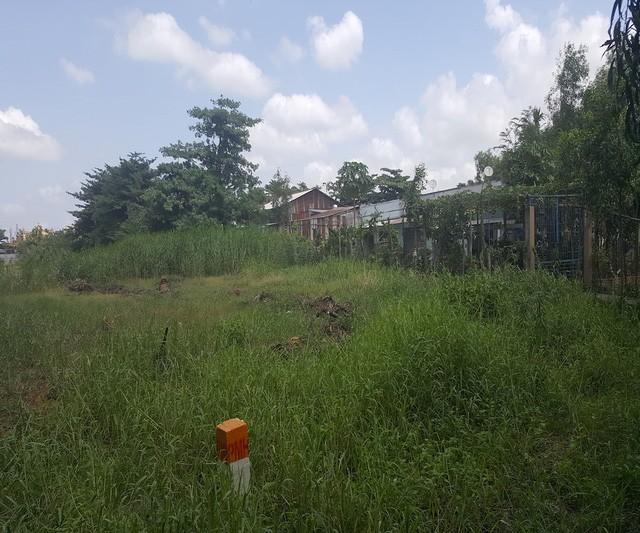Trong lòng dự án là một vùng bao la cỏ dại, lác đác vài ba ngôi nhà của người dân cố bám trụ.