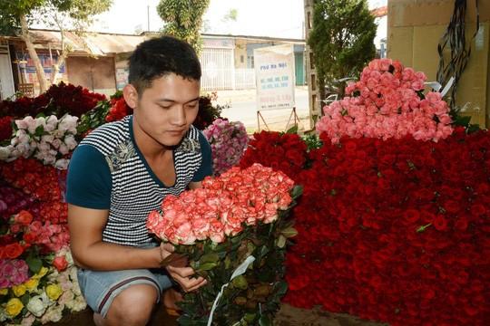 Các loại hoa hồng tại chủ vựa có giá 5.000 - 5.700 đồng/bông, tăng gấp 3 lần ngày thường.