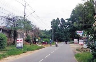 Nhiều bảng quảng cáo nhà đất giăng khắp đường.