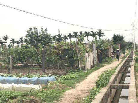 Xay nha trai phep tran lan tren dat nong nghiep o Ha Noi - Anh 11
