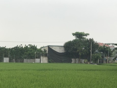 Xay nha trai phep tran lan tren dat nong nghiep o Ha Noi - Anh 8