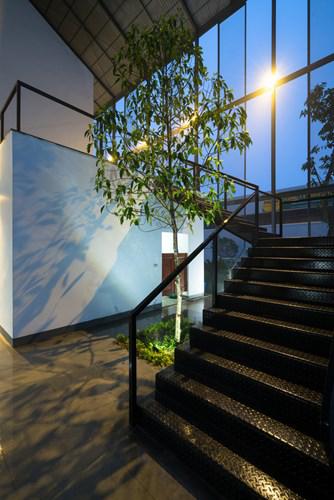 Nơi đây còn được trồng cây xanh tạo không khí thoáng mát cho lối lên tầng.
