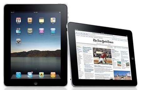 Chiếc iPad thế hệ đầu tiên không hỗ trợ Adobe Flash, điều này khiến người dùng cảm thấy không thoải mái khi duyệt web vì nhiều trang web yêu cầu cài đặt phần bổ trợ để có thể hiển thị các nội dung media.