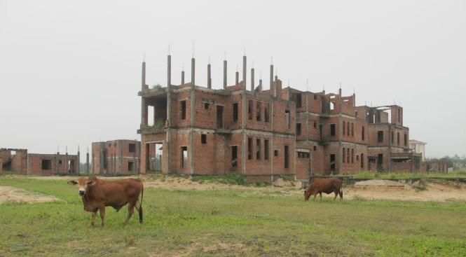 Biệt thự bỏ hoang - Ảnh: Hồ Văn