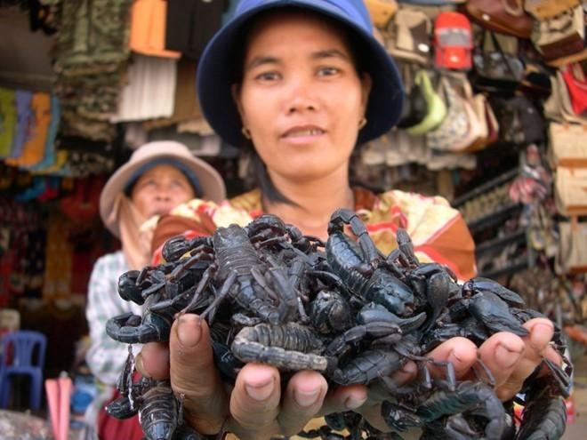 """7. Chợ côn trùng miền Tây Chợ biên giới Tịnh Biên - An Giang được biết đến là một chợ côn trùng. Hàng hóa nơi đây phổ biến là các loại """"hàng độc"""", cực độc như mối chúa, rết, bò cạp, tắc kè, nhện hùm,… Bò cạp giá 4.000-5.000 đồng/con, bửa củi sống 1.500-2.000 đồng/con, rết và nhện hùm khoảng 30.000-40.000 đồng/con. Loài nhện hùm cũng được bán với giá 30.000 -35.000 đồng/con tùy lớn nhỏ. Ảnh: Ngọc Trinh."""