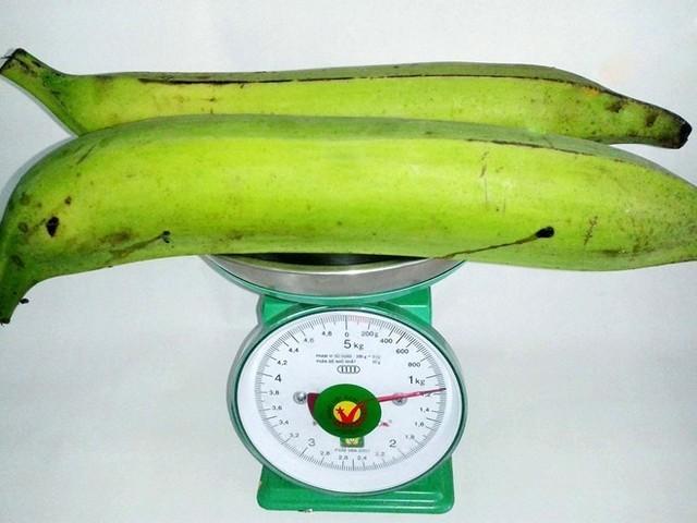 Chuối tá quạ, đặc sản của tỉnh Trà Vinh, mỗi quả cân nặng 0,5 kg, Ảnh: NVCC