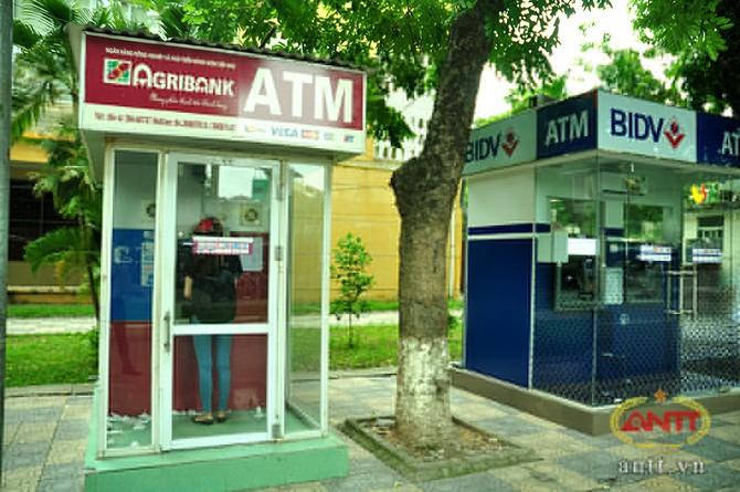 chùm ảnh cây ATM