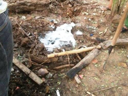 Hóa chất được đổ xuống đất liền sủi bọt và giun bò lên