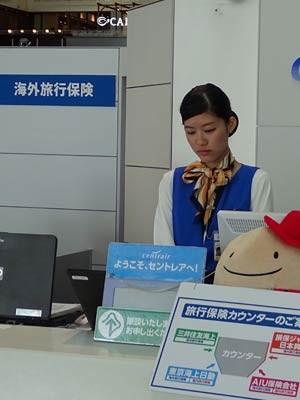 Nhật Bản, sân bay